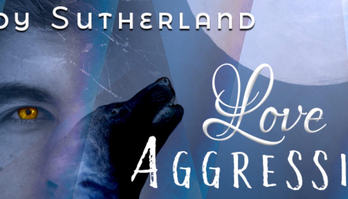 Love Aggression banner